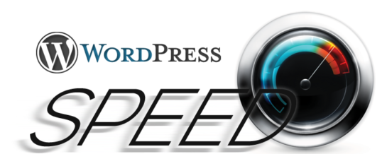 21 Cara Mempercepat Loading Website WordPress Anda